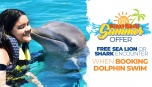 FREE Sea Lion or Shark Encounter, When Booking Dolphin Swim!!!